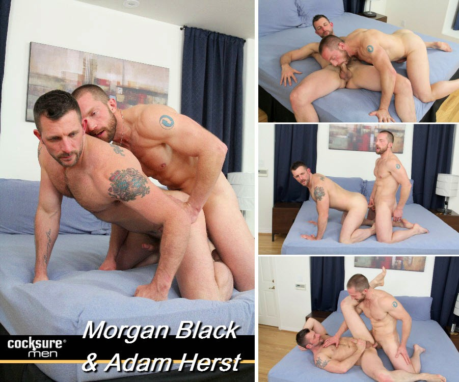 Vídeo Gay Online – Troca-Troca Gay: Morgan Black & Adam Herst