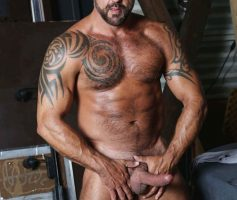 High Performance Men – Machos Maduros: Jon Galt, Vic Rocco