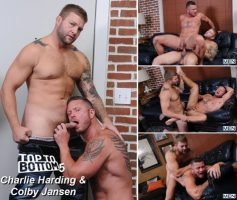 Vídeo Gay Download – Sexo Gay: Top To Bottom 5 Charlie Harding & Colby Jansen