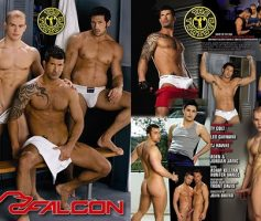 Vídeo Gay Download – Sexo Gay: The Trainer DVD Completo
