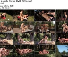 Vídeo Gay Download – Sexo Gay: Muscle Ridge DVD Completo