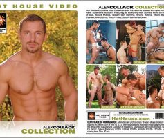 Vídeo Gay Download – Sexo Gay: Alex Collack Collection DVD Completo