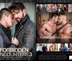 Vídeo Gay Download – Sexo Gay: Forbidden Encounters 3 DVD Completo