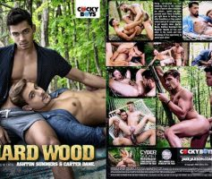 Vídeo Gay Download – Sexo Gay: Hard Wood DVD Completo