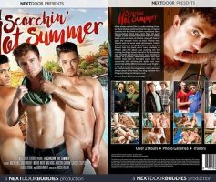 Vídeo Gay Download – Sexo Gay: A Scorchin'Hot Summer DVD Completo