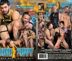 Vídeo Gay Download – Sexo Gay: Pound Puppy DVD Completo