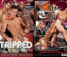 Vídeo Gay Download – Sexo Gay: Stripped 1 DVD Completo