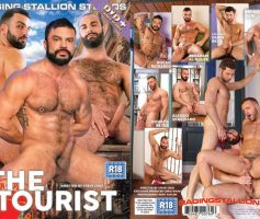 The Tourist DVD Completo – Online
