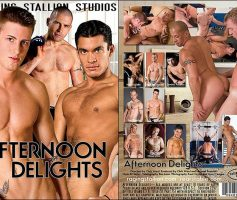 Vídeo Gay Download – Sexo Gay: Afternoon Delights DVD Completo