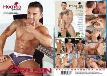 Vídeo Gay Download – Sexo Gay: Heated 2 DVD Completo