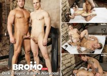 Vídeo Gay Download – Sexo Gay Bareback: Dick Chayne & Brick Norwood