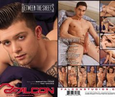 Vídeo Gay Download – Sexo Gay: Between The Sheets DVD Completo