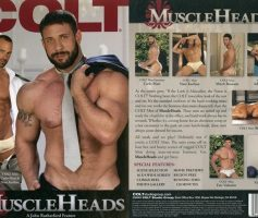Vídeo Gay Download – Colt Studio: Muscle Heads DVD Completo