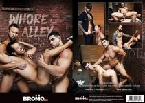 Vídeo Gay Online – Bromo: Whore Alley DVD Completo