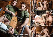 Vídeo Gay Online: Suruba Gay: William Seed, Kit Cohen & Bellamy Bradley