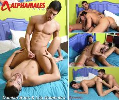 alpha males in super gay wanking