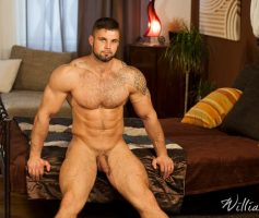 William Higgins – EROTIC SOLO: Leo Lombar – Photoset