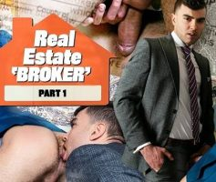 Real Estate Broker Part 1 – Alexander Muller & Gabriel Phoenix – Online